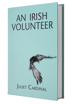 An Irish Volunteer