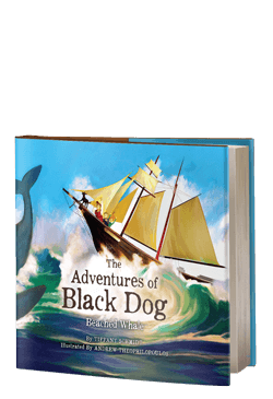 The Adventures of Black Dog: Beached Whale