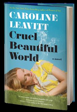 Cruel Beautiful World: A Novel