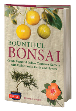 Bountiful Bonsai